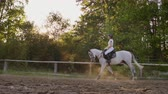 horse riding : Side view: Professional equitation in nature