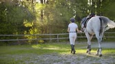 eyer : view from back: Walk in the horse club from horsewomen and horse Stok Video