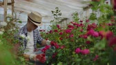 ültetés : Beautiful male florist in apron and pink gloves standing and happily working with flowers in greenhouse