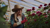 ültetés : Beautiful woman florist in apron and pink gloves standing and happily working with flowers in greenhouse. Stock mozgókép