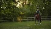 eyer : Beatifull morning in the horse club