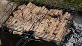 бифштекс : Meat grilled on the grid. Roast meat with different sides on the barbecue Close-up. Food for barbecue party. Tasty grilled food. Pork meat prepared on fire.