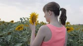girassol : The girl in sunflowers. Young girl stands in the field of sunflowers and gently brings yellow sunflower to her face. Slow motion.