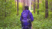 чаща : girl with backpack walk in the woods, slow mo Стоковые видеозаписи