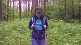 чаща : portrait of a girl with a tourist backpack walking through the woods Стоковые видеозаписи