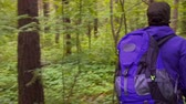 чаща : girl with a backpack is in the green forest