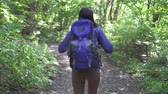 экспедиция : Young tourist girl with backpack on her back walking through the forest rear view