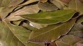 basitlik : Laurel leaf. Dry whole spice leaves rotating pattern macro texture background backdrop footage video.