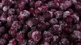 Frozen blueberries. Blueberry grains rotating pattern macro texture background backdrop footage video. Vídeos