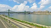 rehber : Liberty bridge Szabadsag hid Budapest Hungary Danube River Stok Video