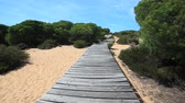 Wooden path to the beach Cuesta Maneli near town Matalascanas,  Andalusia, Spain