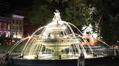 kareler : Toronto, Canada - Oct 13, 2017: Dog fountain at the Berczy Park in the city of Toronto illuminated at night. The fountain was designed by the architect Claude Cormier. Province of Ontario, Canada Stok Video