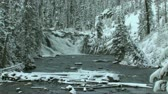 bos winter : Winter water val op Yellowstone River
