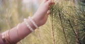 não urbano : Boho girl feeling pine needles on tree in nature