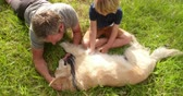 beslemek : Happy dad plays with his little blonde son and their labrador dog at park Stok Video