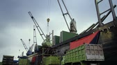 cargo container : cranes unloading activity at ship yard harbor