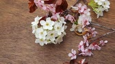 alışılmadık : Flowering branch with white delicate  surface. Declaration of love, spring.  greeting. Wedding bouquet,