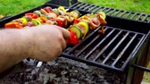 turečtina : Barbecue. Shish kebab with grilled peppers on hot grill