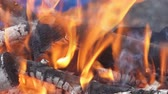 węgiel : Fire burning in slow motion with wood falling