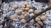 kamp ateşi : Baked potato in a fire