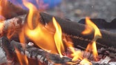 shallow depth field : SLOW MOTION: Close up details of a campfire fire flames burning in nature.