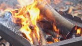 entrar : fire wood for barbecue charcoal Slow Motion Closeup of a warm fire burning in a campfire Vídeos