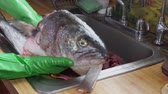 seabass : Cook cleaning bluefish on the scales