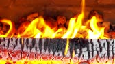 incandescente : Warm fire burning in the Fireplace Stock Footage