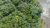 Beautiful aerial view of sring forest and river. Eye bird view on summer nature, green pine forest