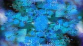 menő : Abstract multicoloured deep blue calm cool tone motion gradient background animation, moving slowly Stock mozgókép