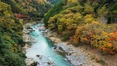nippon : Dolly shot with the beautiful viewpoint landmark of the Katsura river on the Togetsukyo Bridge in the distance, in Arashiyama area in autumn at Kyoto, Japan
