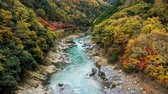 Tilt up shot with the beautiful viewpoint landmark of the Katsura river on the Togetsukyo Bridge in the distance, in Arashiyama area in autumn at Kyoto, Japan Stock Footage