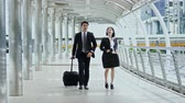 The businessman and pretty businesswoman walking and talking together, checking time with a wristwatch, then they are walking dragging luggage passed in haste through the camera