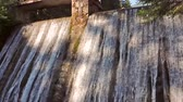 Concrete dam wall with falling waterfall stream in the forest