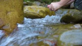 river rapids : Hiker washing hands in stream Stock Footage