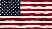 renkli görüntü : United States of America flag waving animation. Full Screen. Symbol of the country. Stok Video