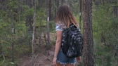 Girl traveler with a backpack goes through the forest Vídeos
