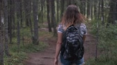 Girl traveler with a backpack goes through the woods. Back view