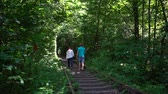 Tourists walk along the railroad in the tunnel of love. Popular landmark, Ukraine. 動画素材
