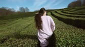 yeşillik : a young woman in sunglasses goes along the green tea plantations in the daytime, on both sides of the lady grow low shrubs of elite green tea