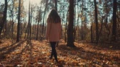 l air : Shot from behind of a young girl peacefully walking in the forest in fall. Woman enjoying fresh air and bright forest. Vidéos Libres De Droits