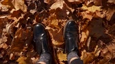 стиль жизни : Shot from above of a woman in black shoes standing in leaves in autumn forest, beautiful day. Womans feet in yellow leaves.