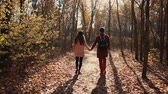 vibrante : Shot from behind of a boyfriend and girlfriend taking a walk in autumn forest together hand in hand, lovely day in nature. Casual couple spending time outdoor.