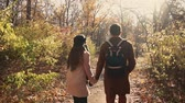 vibrante : View from behind of a couple on a romantic stroll in autumn forest, holding hands and enjoying day together. Lovers taking walk in woods. Vídeos