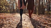 vibrante : Couple takes peaceful stroll in autumn woods spending day as a couple, romantic walk. Lower parts of couples bodies, stylish clothes. Vídeos