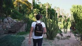 kaktüs : Shot from behind of a guy with backpack visiting local botanic park on vacation, exotic cactuses. Empty botanic park. Touristic place. Lovely garden.