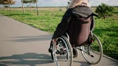 olasılık : Young woman is moving by road in park riding invalid chair in sunny weather