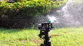 Springer water system used for watering plant and flower in the garden, full hd 1080p slow motion.