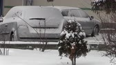 capturados : parked cars covered with snow - snow storm