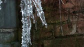Close up shot of some icicles melting Stock Footage